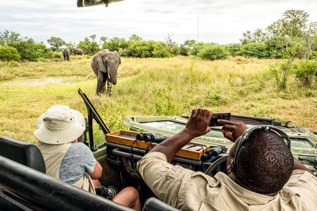 Safari camping in the Okavango Delta of Botswana