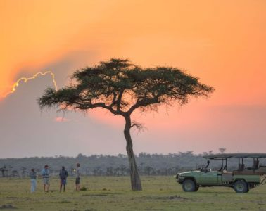 Discounted safaris in Africa for COVID-19 frontliners