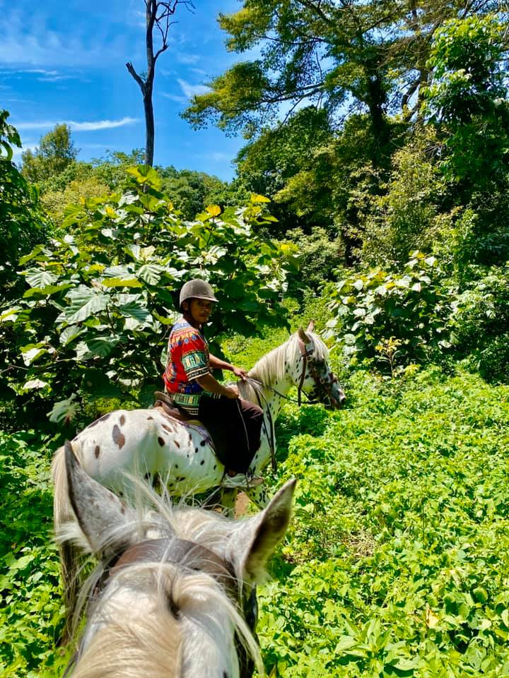 Horse safaris in Tanzania. Where to ride a horse in Kilimanjaro.