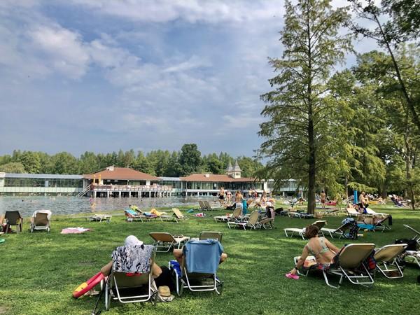The healing power of Lake Heviz in Hungary