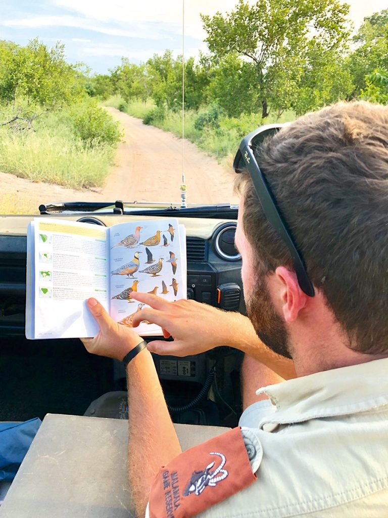Game drives at MalaMala Game Reserve, one of the best safari lodges in South Africa