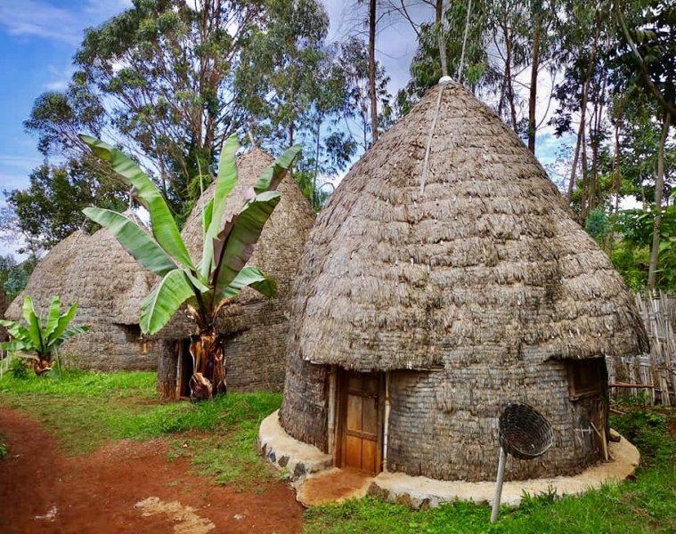 The Dorze Trip in Arba Minch Ethiopia