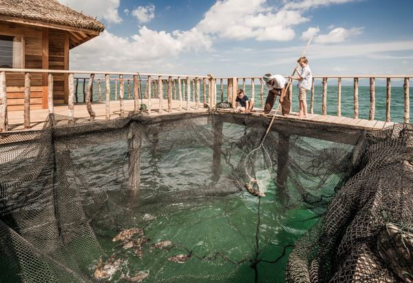 Traditional Fishing at Four Seasons Resort Langkawi